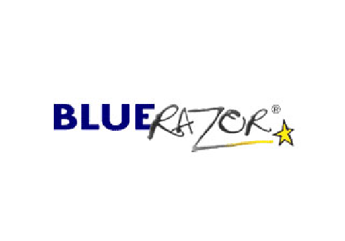 Blue Razor Domains, LLC